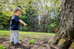 Young Boy in a Park Beside a Tree Pointing to the Ground Stock Photography