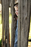 Young boy peeking out of old barn Stock Photo
