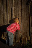 Young Boy Peeks Inside Barn Stock Image