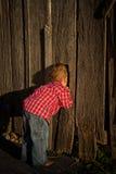 Young Boy Peeks Inside Barn Stock Image