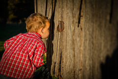 Young Boy Peeks Inside Barn royalty free stock photos