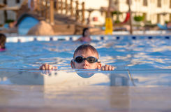 Young boy peering out of a swimming pool Royalty Free Stock Photos