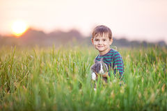 Young boy with a pet rabbit in a field Royalty Free Stock Image