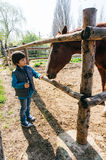 Young boy petting horse Royalty Free Stock Photo