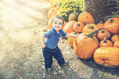 Young Boy Picking Out a Pumpkin Stock Photos