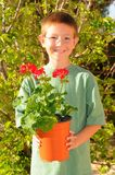 Young Boy Planting Flowers Royalty Free Stock Photography