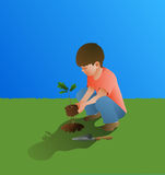 Young Boy Planting Oak Tree Royalty Free Stock Images