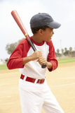 Young Boy Playing Baseball. Young African American Boy Playing Baseball royalty free stock photography