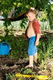 Young boy playing in the garden Stock Photo