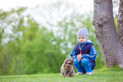 Young boy playing with pet rabbit in park Stock Image