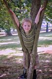 Young Boy Playing In A Tree stock images