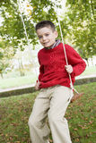 Young boy playing on tree swing Royalty Free Stock Photo