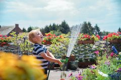 Young boy playing with water. Young cute boy kid child four years old, having fun with water, watering flowers, leisure activity outdoor stock photography