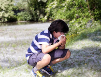 Young boy with pollen allergy Royalty Free Stock Image