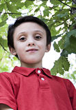Young Boy Portrait Royalty Free Stock Image