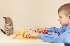 Young boy with pretty kitten plays chess. Stock Photography