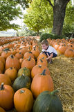 Young Boy & Pumkins Stock Images