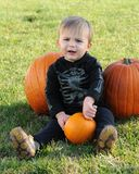 Young boy with pumpkins Stock Photos