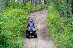 A young boy quads up a hill through the forest royalty free stock photography