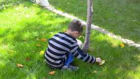 Young boy raking leaves stock video footage