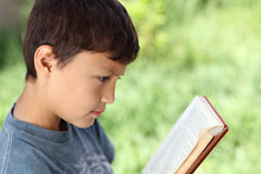 Young boy reading book outside Stock Image