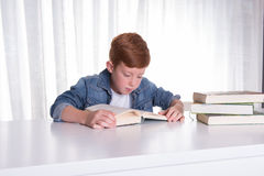 Young boy reading in books Royalty Free Stock Photo