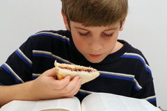 Young boy reading w/sandwich. Shot of young boy reading w/sandwich Royalty Free Stock Image