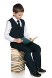 Young boy reads on the pile of books Stock Image
