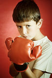 Young boy ready to box. Young Boy Boxer with red Boxing Gloves Stock Photography
