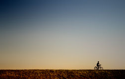 Young boy riding a bicycle Royalty Free Stock Image