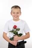 Young boy with a rose on Valentine's Day Royalty Free Stock Photos