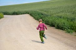 Young boy run in the fields Stock Images