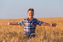 Young boy running on ripe wheat field Royalty Free Stock Images