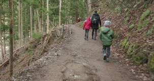 Young boy runs to catch up with his sister and mother on a forest trail stock footage