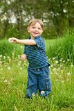 Boy holding dandelions in a field of weeds. Young boy in rural country laughing and shaking dandelion weeds stock photos