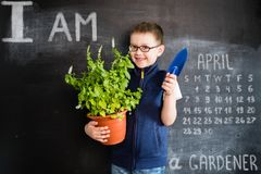 Young boy`s standing with plant in pot in his hands near blackboard. Young gardener. Creative design concept for 2019. Calendar. April royalty free stock photography
