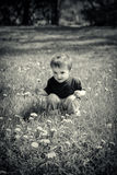 Young Boy Sits Outside Holding a Dandelion Flower - Black and Wh Royalty Free Stock Images