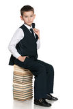 Young boy sits on the pile of books Royalty Free Stock Images