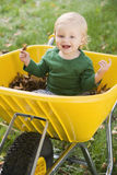 Young boy sitting in wheelbarrow. Of autumn leaves Stock Image