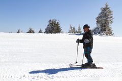 Young boy skiing Royalty Free Stock Photos