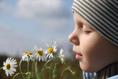 Young boy smelling chamomile Royalty Free Stock Images