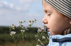 Free Young Boy Smelling Flower Stock Photo - 6750080