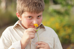 Young boy smelling the flowers Stock Image