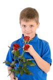 Young boy smelling a rose Stock Image