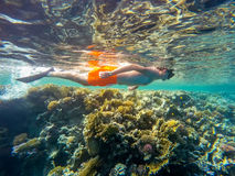 Young boy Snorkel swim in shallow water with coral fish stock photography