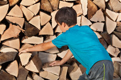 Young boy stacking firewood in the shed Stock Photos