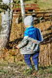 A young boy stands on a hill in the forest and observes the world around him. stock photo