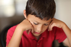 Young boy student Stock Image