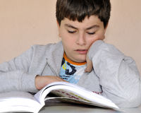 Young boy studying Stock Images