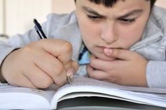 Young Boy Studying Stock Image